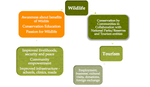 Conservation Cycle Image